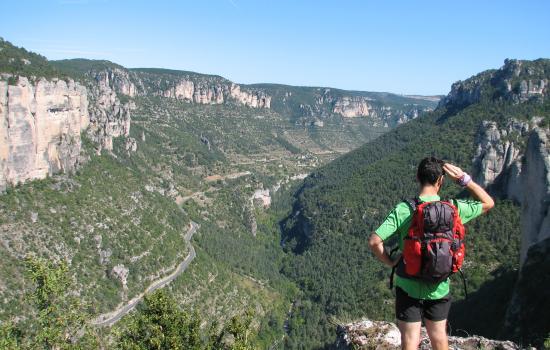 profond canyon entre le Causse de Sauveterre et le Causse Mejean