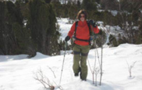 Off-track snowhsoeing trail