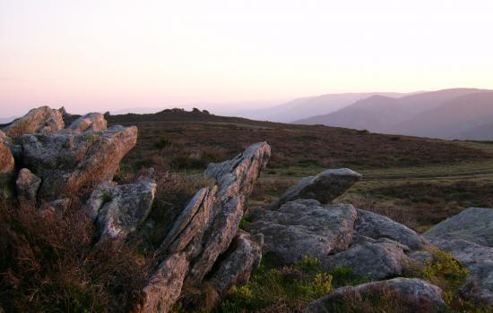 Plateau du Caroux, accessible en joelette