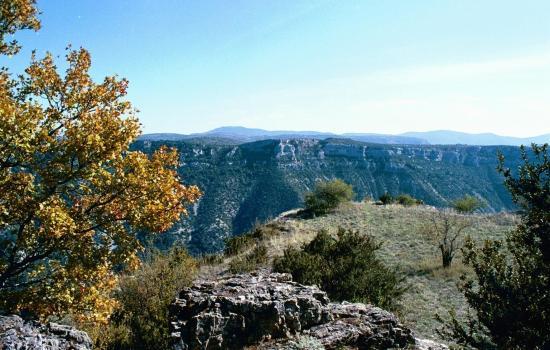 Gorges de la Vis séparant Larzac et causse de Blandas