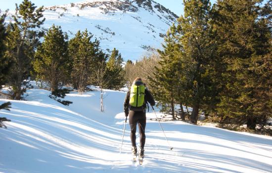 L'ascension du Mezenc, un incontournable avec la récompense d'un panorama portant sur les Alpes et les sommets du Massif Central