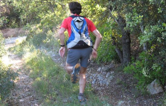 La garrigue, terrain de trail