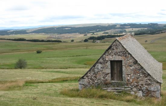 Typical summer shed in Aubrac grassland