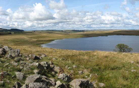 Lac de Saint Andéol