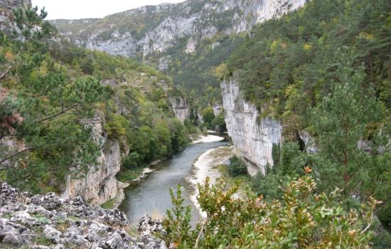 Tarn Gorges Cycling