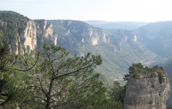 Vue sur les Gorges de la Jonte