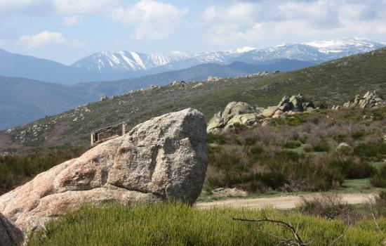 Les sommets pyrénéens enneigés au loin