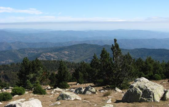 Panorama jusqu'aux Alpes