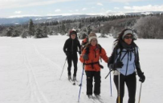 Partir en ski nordique a la decouverte des hautes terres du Massif Central