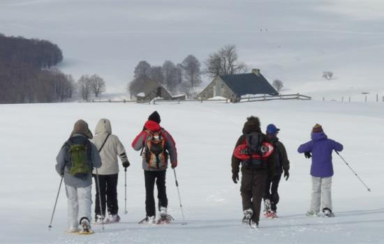 Snowshoe hiking with a local mountain guide