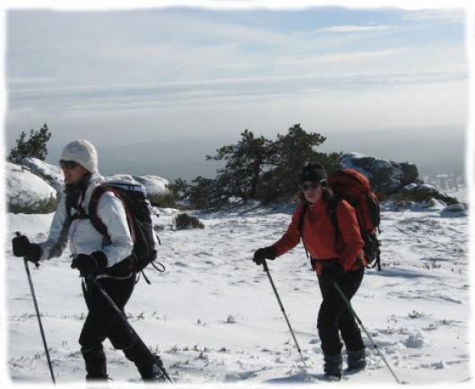 Parcours randonnée en raquettes Mont Aigoual