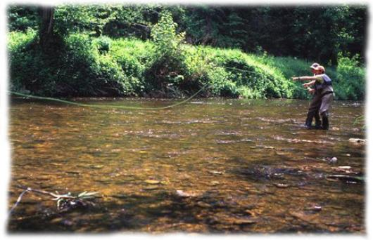 Avec un guide peche professionnel, vous etes initie à la peche a la mouche : le lancer, la lecture de la riviere, le choix des mouches, leur montage