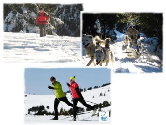 Decouvrez les jooies des activités nordiques sur les hauts plateaux du Massif Central