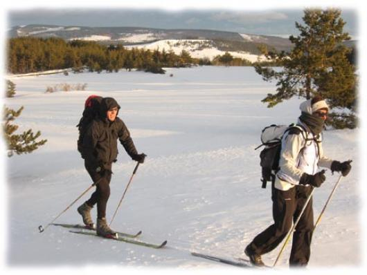 Courbes arrondies du Mont Lozere, chaos granitiques soupoudrés de neige, hameaux de Bellecoste et de Mas Camargues sont le cadre de votre randonnee ski nordique
