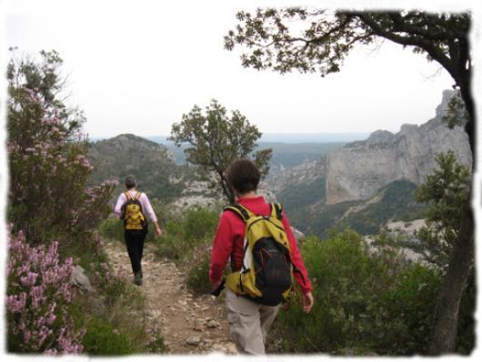 Les Monts de St Guilhem le Désert