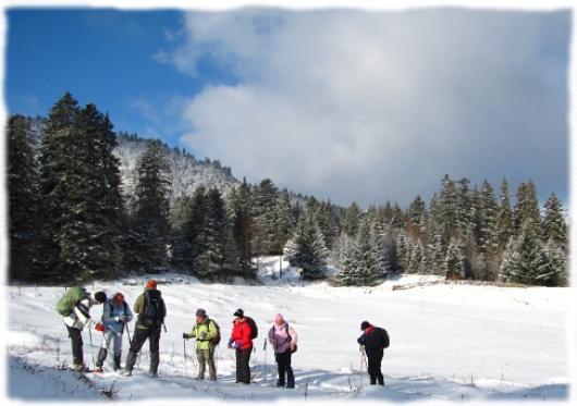 Randonnée raquettes guidée dans les Monts du Cantal