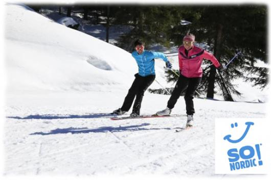 Cross-Country ski initiation or improvement, alternating step, skate skiing, ice-skating step