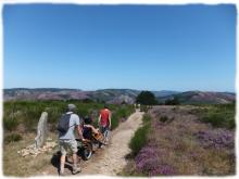 Rando joelette Caroux Haut Languedoc