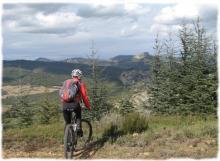 VTT entre vignes, garrigue et montagne