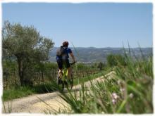 Velo randonnee vignoble Languedoc