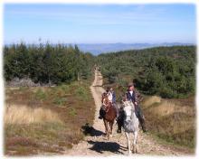 Itinérance équestre en Margeride