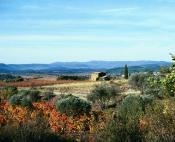 Randonnée vélo entre vignes et oliviers
