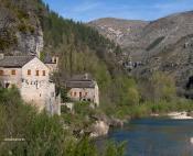 Gorges du Tarn : entre Causse Méjean et Causse de Sauveterre
