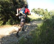 Trail en garrigue