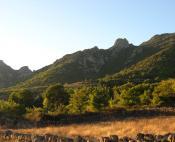 Montagne du Caroux