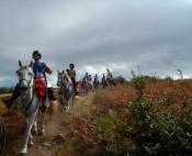 Rando cheval sur le causse ou les gorges du Tarn