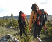 Long-distance trail between Cévennes and Grands Causses