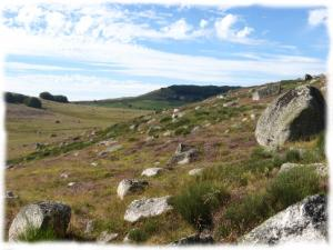 Randonnee entre prairies et blocs de granit en Aubrac
