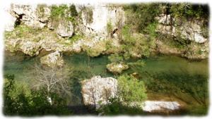 La Vis, belle rivière à truite